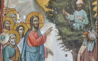 Sunday, January 26: 32nd Sunday after Pentecost – Sunday of Zacchaeus, Tone 8. Our Venerable Father Xenophon and his wife Maria