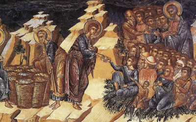 July 26; Eighth Sunday after Pentecost