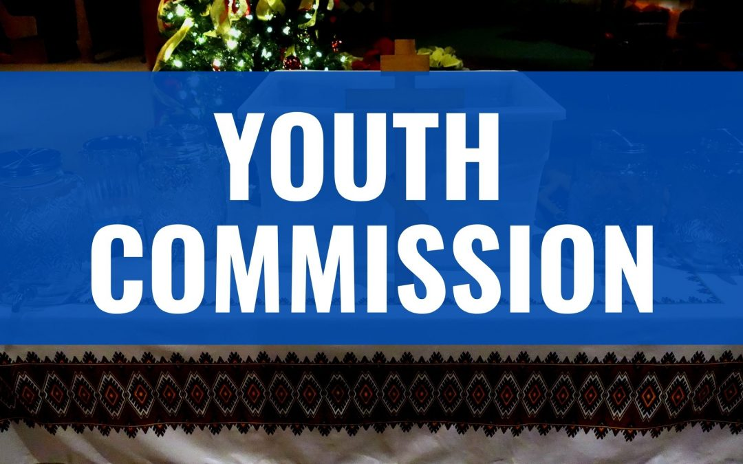 Youth Commission Terms of Reference